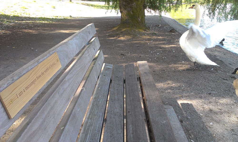 Stanley Park Dedications