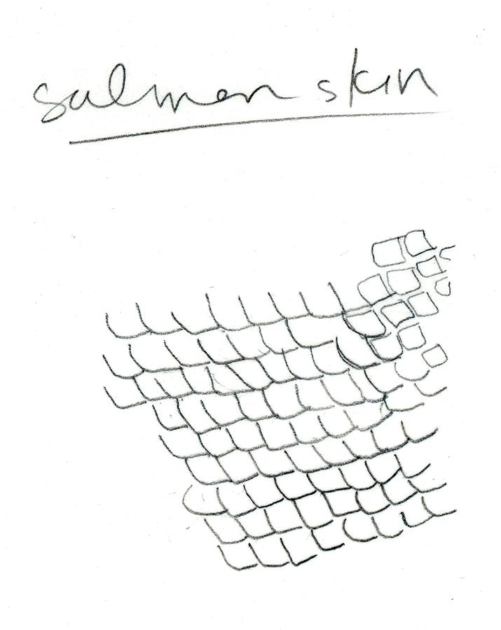 SalmonSkin